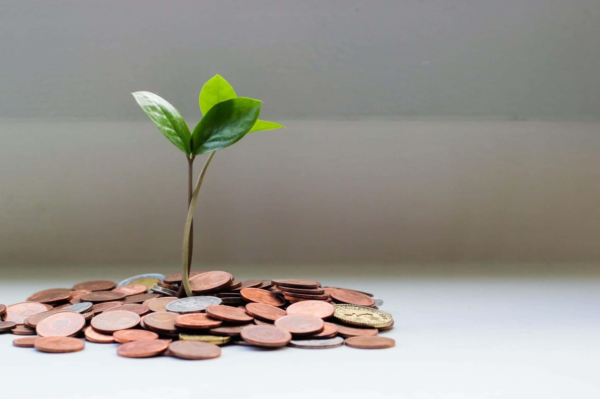 """Toen ik 5 jaar geleden voor het eerst hoorde over money mindset, was mijn reactie """"wat een onzin, ik haat al dat zweverige gedoe!"""" Dat laatste klopt nog steeds, want ik ben vrij nuchter, maar ik heb sindsdien zelf gemerkt wat een goede money mindset voor je kan betekenen. Je mindset heeft namelijk véél meer invloed op je financiën dan je in eerste instantie denkt! In deze blog leg ik uit wat money mindset nou eigenlijk is, waarom het nuttig is om die van jou te verbeteren en geef ik je een paar praktische tips om daar vandaag al mee te beginnen! Aan je mindset werken is in de afgelopen jaren gelukkig redelijk normaal geworden, dus waarom zou je dan niet ook aan je money mindset werken?"""